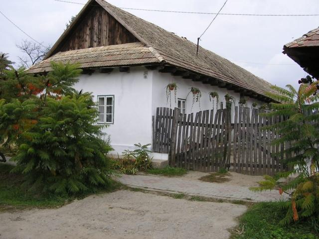 Rita sajtműhelye