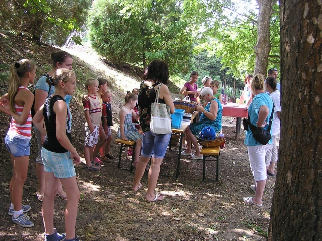 A Csesztvei Családi piknik 2015.07.28.